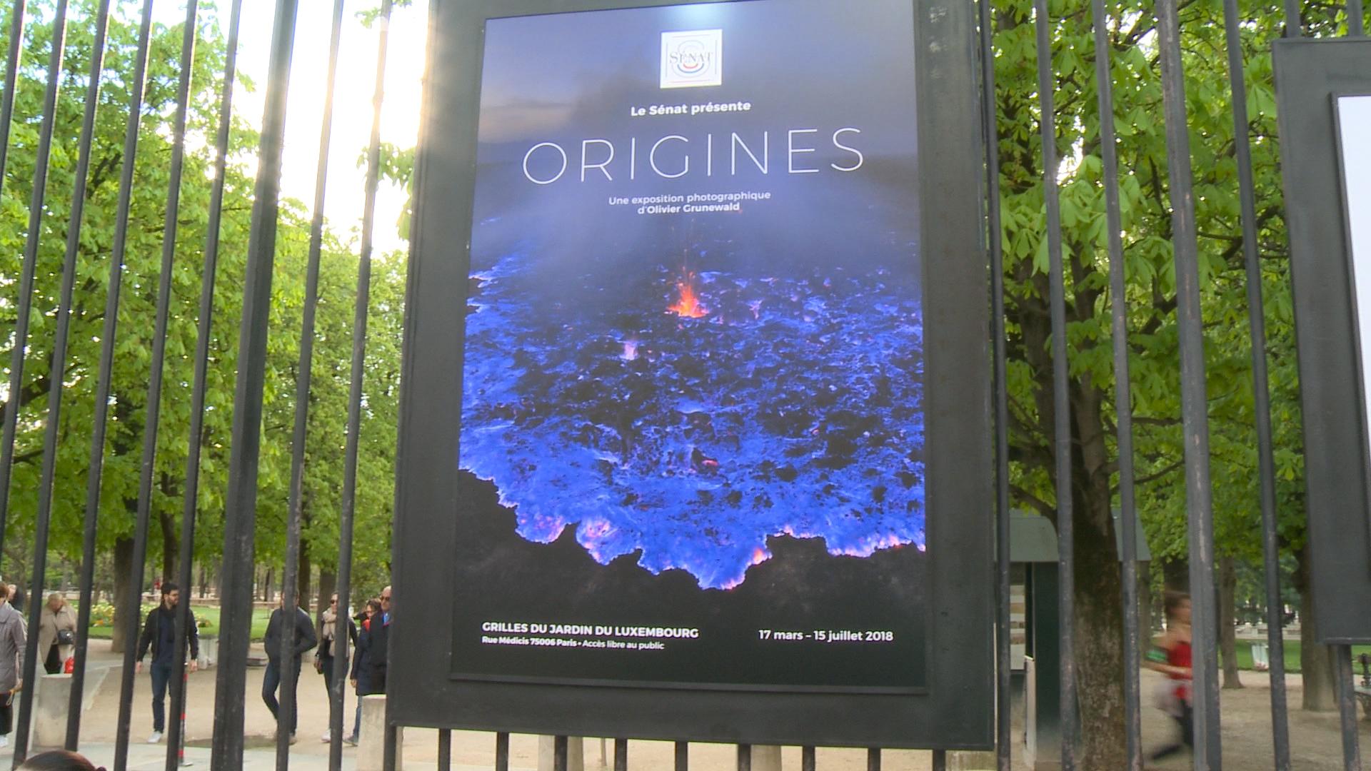 Grilles Du Jardin Du Luxembourg Exposition Origines
