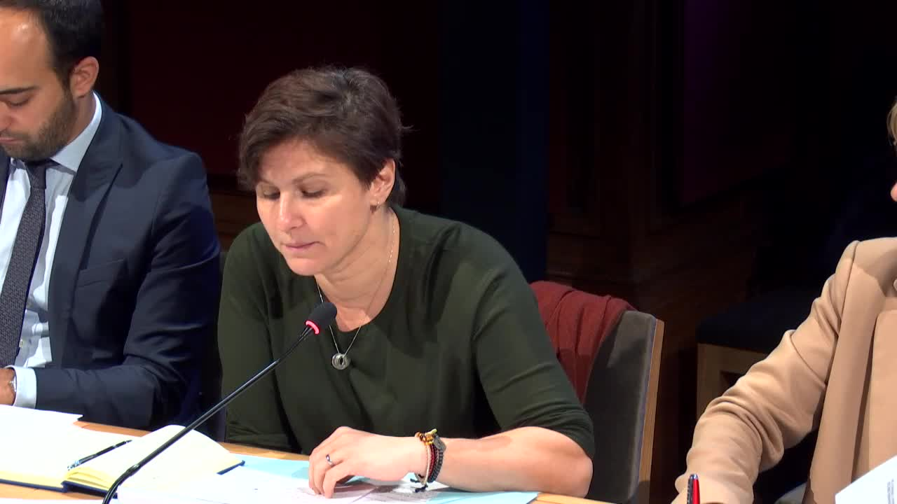 Audition de Mme Roxana Maracineanu, ministre des Sports